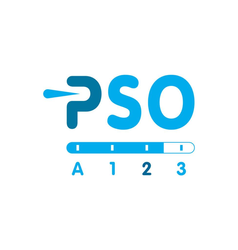 PSO trede 2: sociaal ondernemen