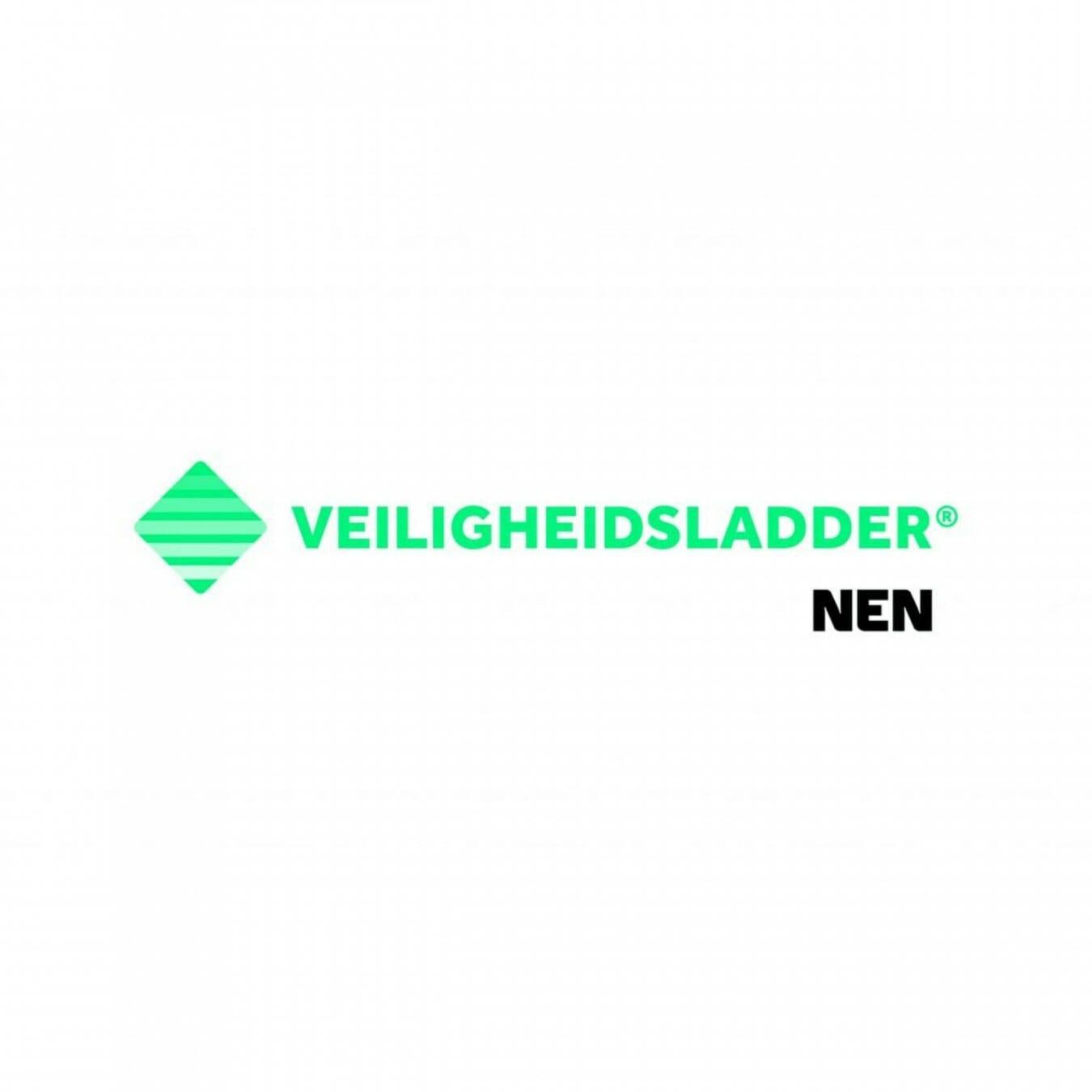 Safety Culture Ladder